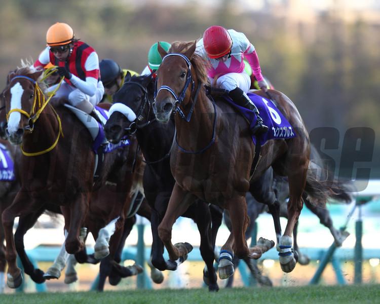 Asia Express wins the Asahi Hai Futurity Stakes<br /> Masakazu Takahashi Photo