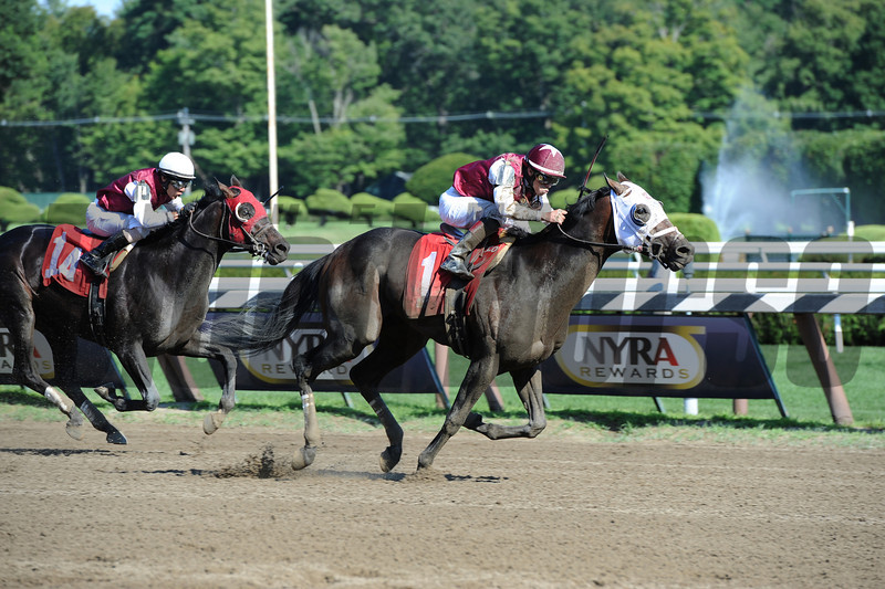 Romansh (left) wins the Curlin Stakes via Disqualification (Transparent finished first).<br /> Coglianese Photos