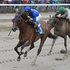 Saginaw wins the 2013 John Morrissey Stakes.<br /> Coglianese Photos