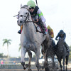 Honorable Dillon wins the 2013 Hutcheson Stakes.<br /> Coglianese Photos/Courtney Heeney