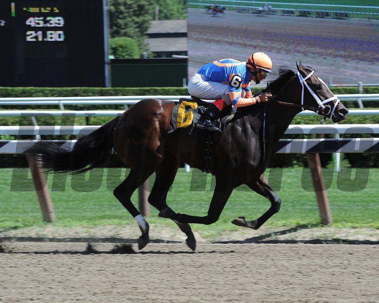 Our Amazing Rose - Maiden Win, July 25, 2013<br /> Coglianese Photos