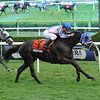 Frosty Bay wins the 2013 Statue of Liberty. <br /> Coglianese Photos