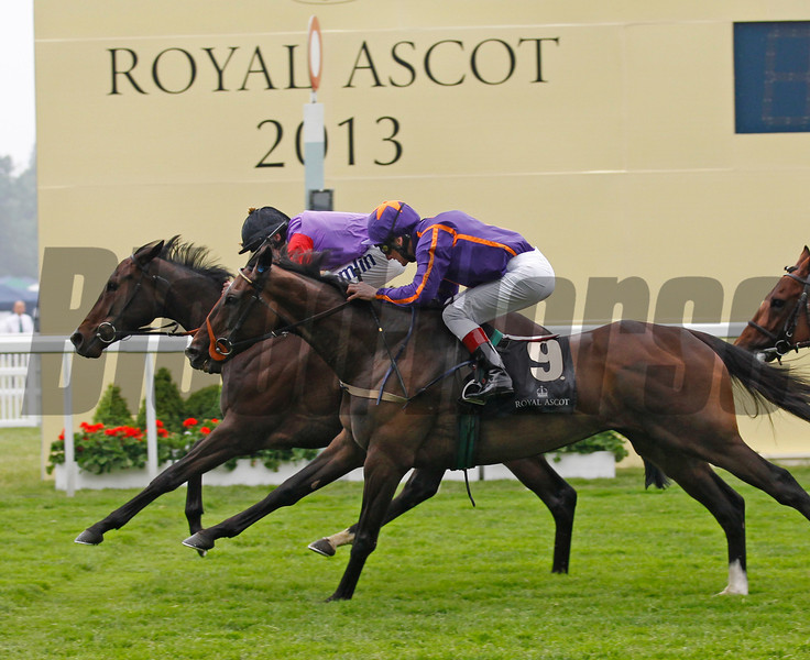 Racing from Royal Ascot 20/6/13. The Ascot Gold Cup .<br /> Estimate ridden by Ryan Moore (black cap) wins from Simenon (orange star).<br /> Trevor Jones Photo