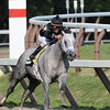 Wired Bryan wins the 2013 Sanford.<br /> Coglianese Photos/Adel Bellinger
