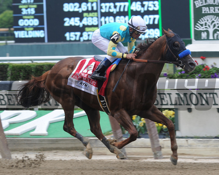 Fast Bullet is victorious in the 2013 True North Handicap at Belmont Park.<br /> Coglianese Photos