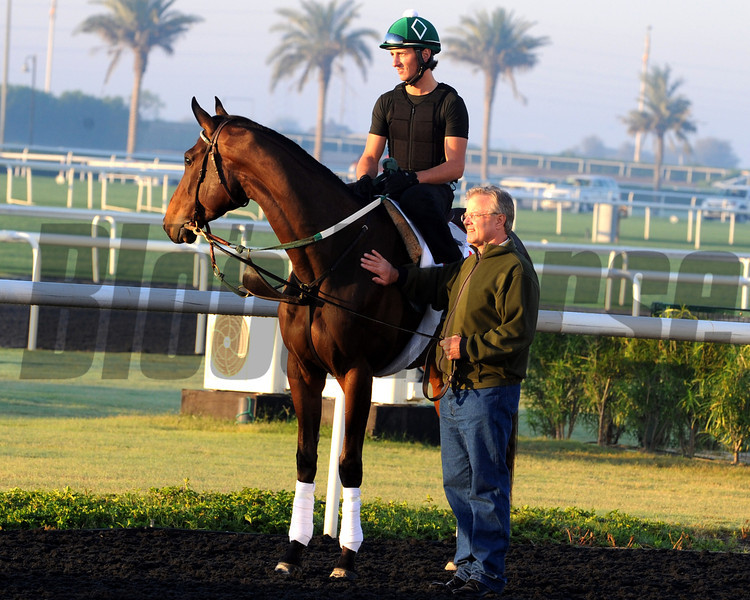 Royal Delta with Bill Mott<br /> Dubai, March 2013<br /> Dave Harmon Photo