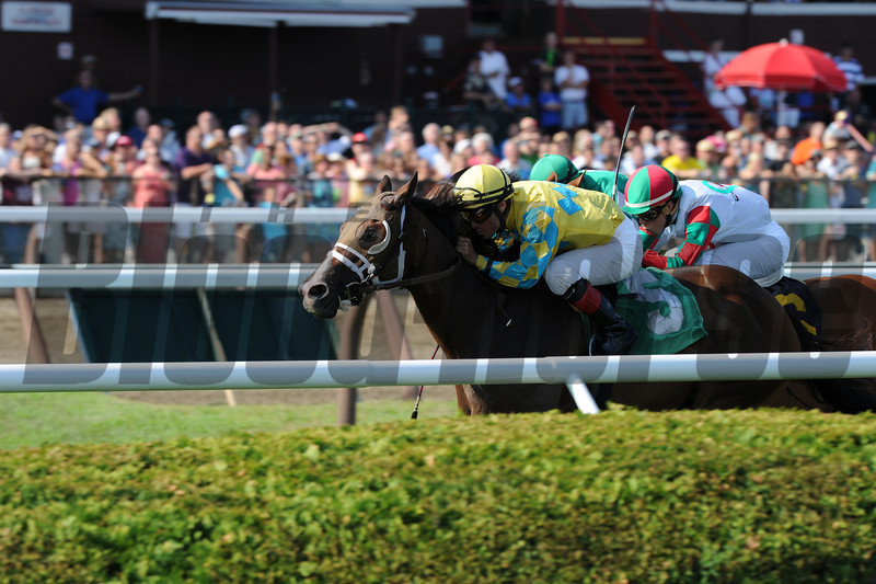 Strong Impact win the 2013 Fiddlers Patriot Stakes.<br /> Coglianese Photos/Adam Mooshian