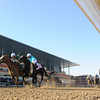 Declan's Warrior wins the 2013 Bay Shore.<br /> Coglianese Photos