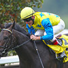 Racing from Ascot 27/7/13. King George  and Queen Elizabeth Stks. <br /> Novellist ridden by Johnny Murtagh.<br /> Trevor Jones Photo