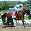 Fast Bullet wins the 2013 True North.<br /> Coglianese Photos/Courtney Heeney