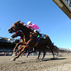 Sweet Lulu wins the 2013 Test.<br /> Coglianese Photos