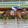 Candy Kitty wins the 2013 Wait a While Stakes.<br /> Coglianese Photos/Leslie Martin
