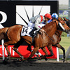 Al Manun Monlau running in the Dubai Kahaya Classic.<br /> Photo by Dave Harmon