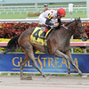 Successful Song captures The Florida Sunshine Millions Distaff at Gulfstream Park on 1/19/2013 with Joel Rosario up.<br /> Coglianese Photos/Courtney Heeney