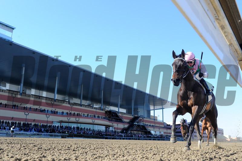 Close Hatches wins the 2013 Gazelle.<br /> Coglianese Photos