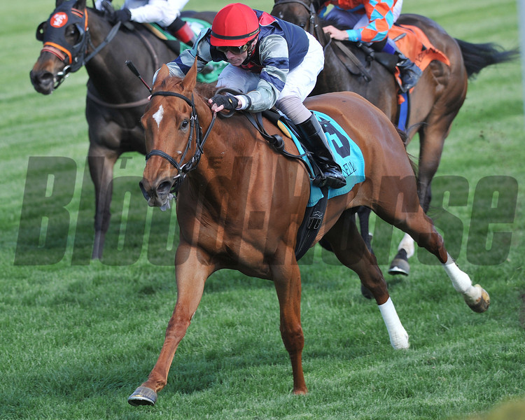 Sweet Cassiopeia, Josphe Rocco up, wins the Giants Causeway Lexington, Keeneland Race Track, Lexington KY<br /> ©Photo by Mathea Kelley 4/20/13
