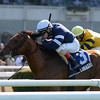 Lubash wins the 2013 Fort Marcy Stakes.<br /> Coglianese Photos/Joe Labozzetta