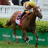 Wise Dan with jockey Jose Lezcano in the irons wins the 27th running of The Woodford Reserve Turf Classic at Churchill Downs in Louisville, Kentucky May 3, 2013.<br /> Skip Dickstein Photo