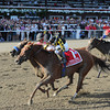 Dance to Bristol wins the 2013 Ballerina.<br /> Coglianese Photos
