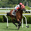 Hyper wins the 2013 John's Call.<br /> Coglianese Photos