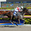 Orb - Allowance Win, January 26, 2013.<br /> Coglianese Photos/Leslie Martin