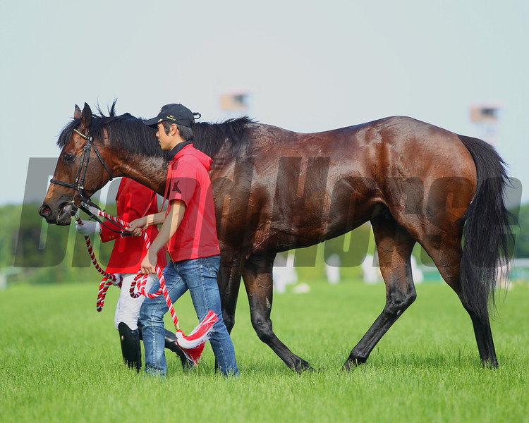 Lord Kanaloa wins the Yasuda Kinen in Japan.<br /> Photo by Masakazu Takahashi