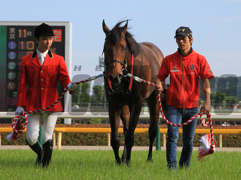 Lord Kanaloa wins the Yasuda Kinen in Japan.<br /> Photo by Naoji Inada