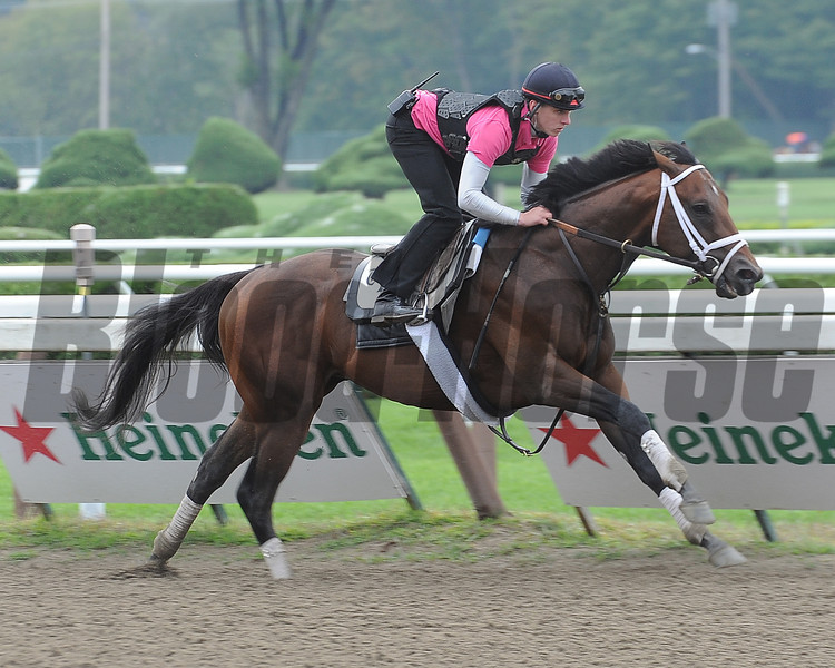 Palace Malice works 8/18/2013.<br /> Coglianese Photos