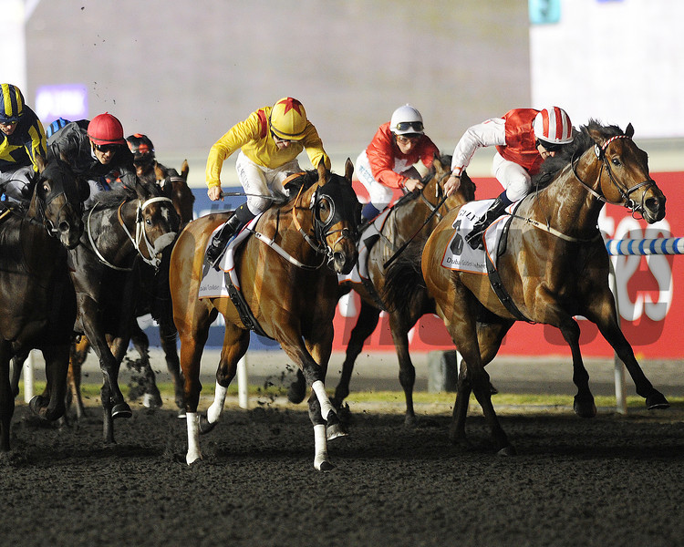 Reynaldothewizard wins the 2013 Golden Shaheen.<br /> Photo by Mathea Kelley