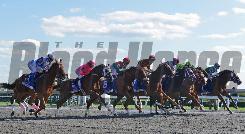 Winning Cause, Julien Leparoux up, wins the Coolmore Lexington, Keeneland Race Track, Lexington KY<br /> ©Photo by Mathea Kelley 4/20/13
