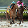 Calidoscopio wins the 2013 Brooklyn Handicap.<br /> Coglianese Photos/Joe Labozzetta