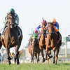 Centre Court wins the 2013 Honey Fox.<br /> Coglianese Photos/Courtney Heeney