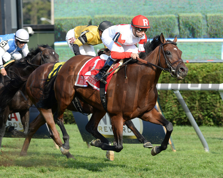 Big Blue Kitten wins the 2013 Sword Dancer.<br /> Coglianese Photos
