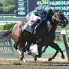 Tiz Miz Sue wins the Ogden Phipps Handicap.<br /> Photo by Coglianese Photos