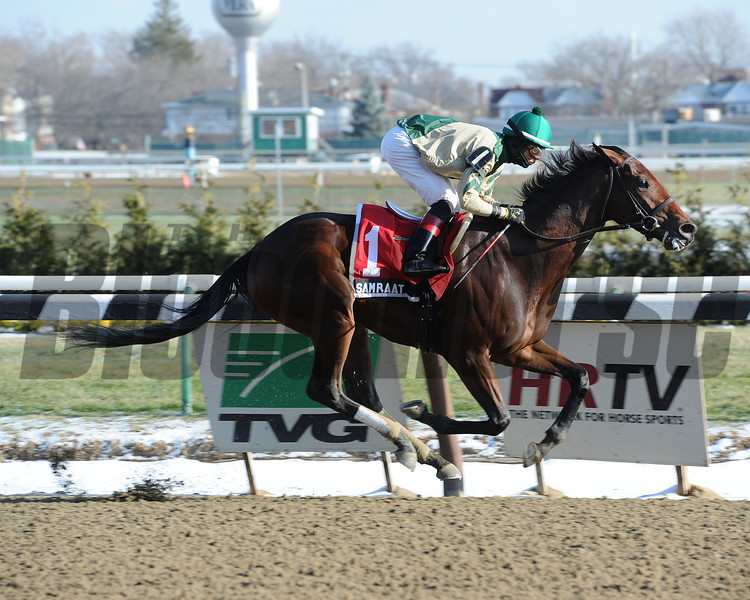 Samraat wins the 2013 Damon Runyon Stakes.<br /> Coglianese Photos
