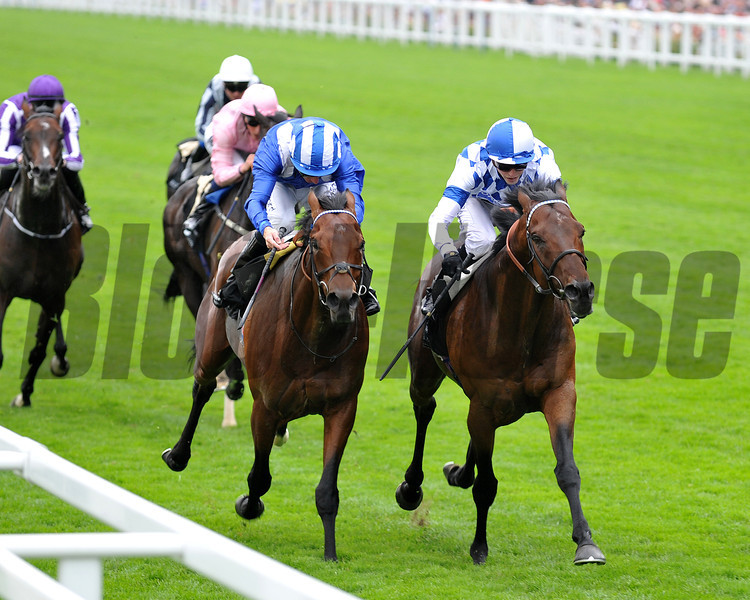 Al Kazeem, James Doyle up, wins the Pince of Wales Stakes, Royal Ascot, UK, photo by Mathea Kelley; 6/19/13