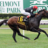 Boisterous wins the 2013 Man o' War.<br /> Coglianese Photos/Courtney Heeney