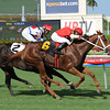 Millennia wins TaWee Stakes<br /> Jockey: Jesus M. Rios<br /> GULFSTREAM PARK, Hallandale, FL<br /> Purse: $100,000<br /> Date: August 10, 2013<br /> Class:<br /> TV:<br /> Age: 3 yo's & up<br /> Race: 9<br /> Distance: One And One Sixteenth Miles<br /> Post Time: 5:15 PM<br /> Photo by: Leslie Martin/Coglianese Photos
