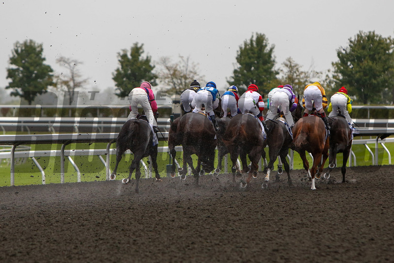 The Shadwell Turf mile was move to the poly track due to rain.  Silver Max with Robby Albarado up won the 28th Running of The Shadwell Turf Mile at Keeneland on October 5, 2013 in Lexington, Ky.<br /> Mark Mahan Photo