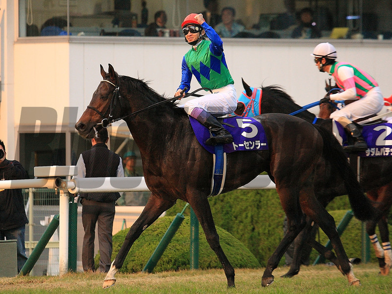 Tosen Ra wins the Mile Championship at Kyoto Racecourse, Japan.<br /> Naoji Inada Photo