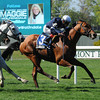 Lubash wins the 2013 Fort Marcy Stakes.<br /> Coglianese Photos