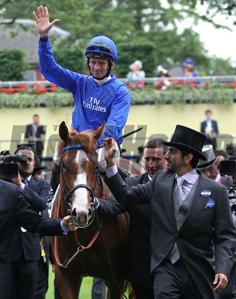 Racing from Ascot 18/6/13, St James Palace Stakes.<br /> Dawn Approach is led into the winners Enclosure by Sheikh Mohammed's son Hamdan<br /> Trevor Jones Photo