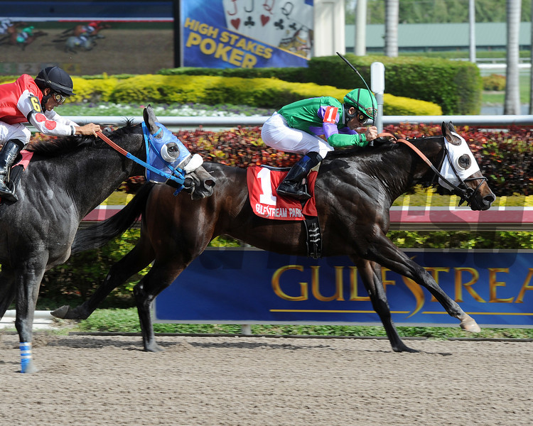 Merit Man wins the 2013 Spectacular Bid.<br /> Coglianese Photos