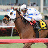 Teaks North wins the 2013 Sunshine Millions Turf.<br /> Coglianese Photos