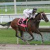 Dreaming of Sophia wins the 2013 Cellars Shiraz Stakes.<br /> Coglianese Photos/Kenny Martin