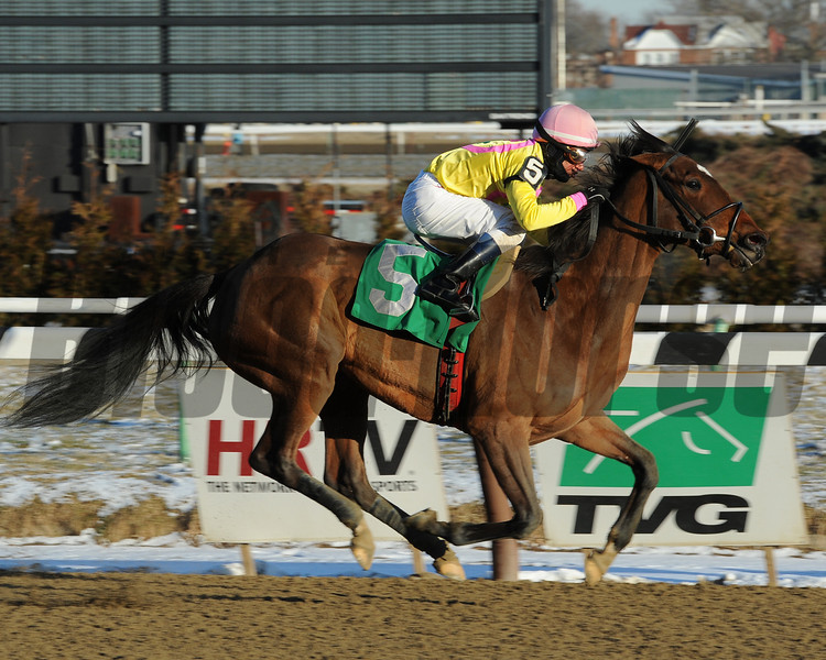 Twice the Lady wins the 2013 Affectionately.<br /> Coglianese Photos