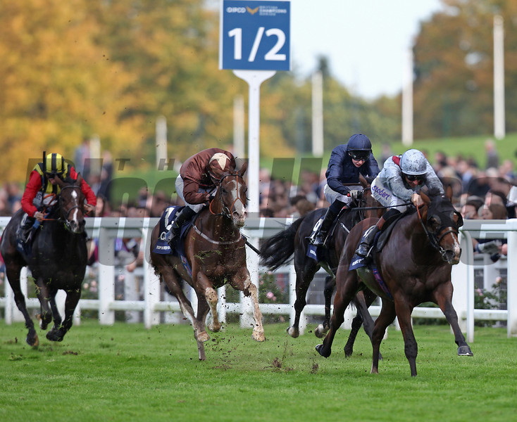 Olympic Glory wins the 2013 Queen Elizabeth II Stakes.<br /> Trevor Jones Photo