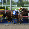 Holdin Bullets wins at Gulfstream Park 1/13/2013.<br /> Photo by Coglianese Photos
