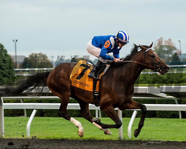 Najjaar, James Graham uo, wins the Sycamore Stakes, Keeneland Race Course; Lexington; photo by Mathea Kelley; 10/17/13;