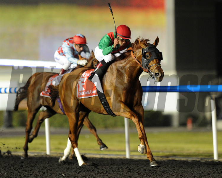 Animal Kingdom, Joel Rosario up wins the   Dubai World Cup   Meydan, March 30th, 2013, photo by Mathea Kelley<br /> Dubai World Cup Day